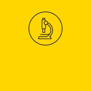 SSO Icon